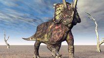 Documenta2 - Planeta dinosaurio: mundo alienígena