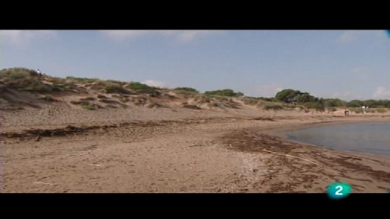 El bosque protector - Las dunas del Golfo de Rosas