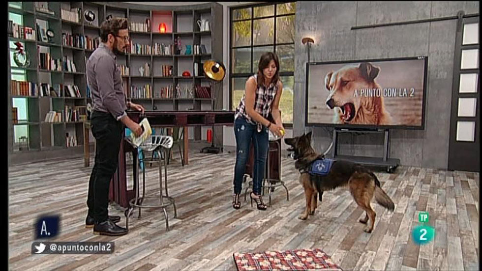 A punto con La 2 - Animales en casa - Educar premiando