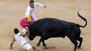 Un toro embiste en la plaza al imprudente mozo