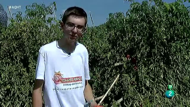 Un emprendedor de 16 años es el Rey del Tomate