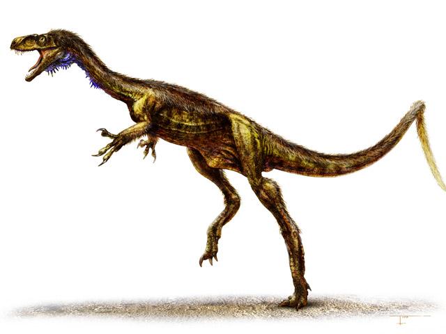 El Eodromaeus, el pariente diminuto del 'Tyrannosaurus rex'