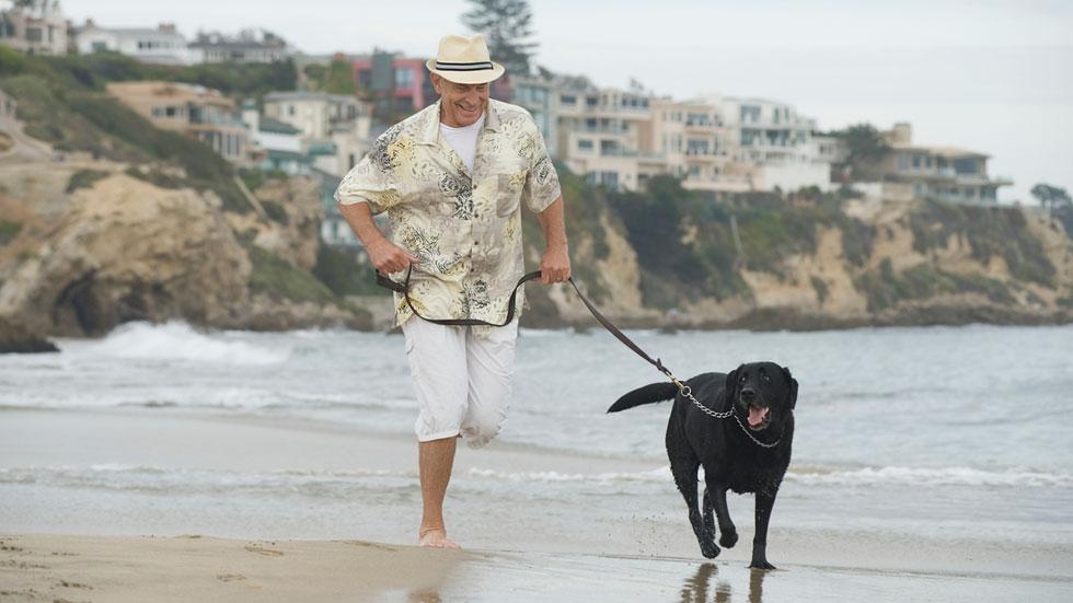 España ya cuenta con más de 40 playas donde se permiten los perros
