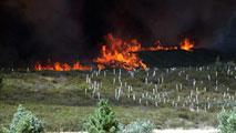 Ir al VideoEstabilizado el fuego en Quintana del Castillo (León), que ha quemado más de 2.000 hectáreas