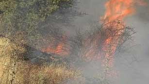 Un centenar de personas intentan controlar el fuego en el Parque Natural del Alto Tajo