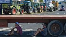 Ir al VideoLos ganaderos franceses bloquean las carreteras en protesta por los bajos precios de la carne