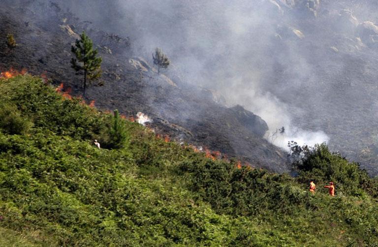 La Guardia Civil ha detenido a 83 personas e imputado a más de doscientas, por estar vinculadas a incendios