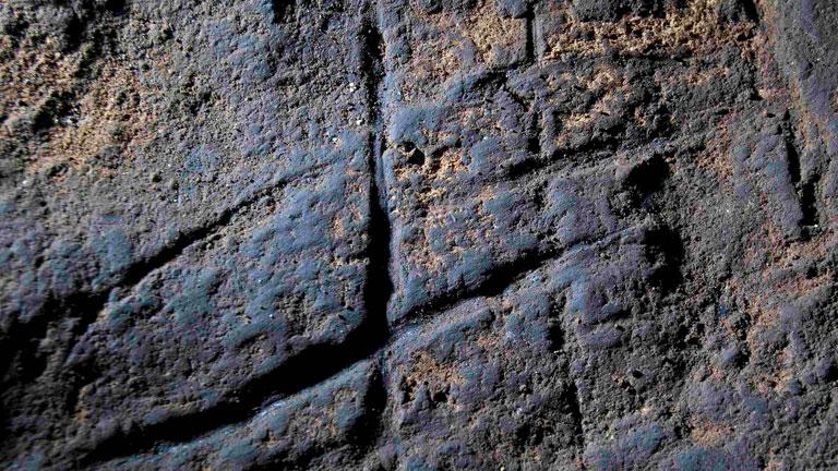 Imagen sobre el grabado de los neandertales cedida por el Museo de Gibraltar