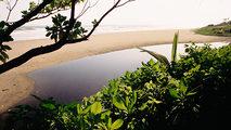 Las islas más salvajes de Indonesia: Islas del Monzón