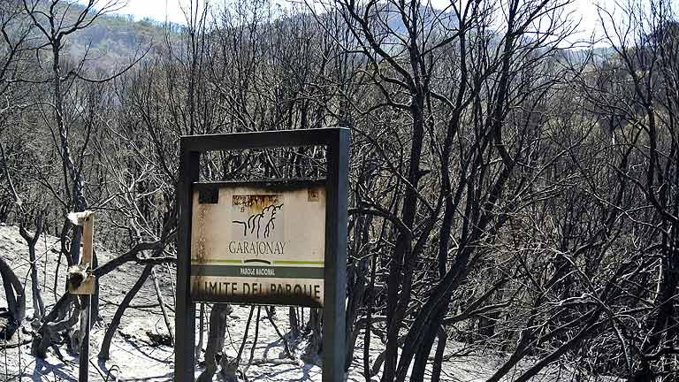 La Guardia Civil interroga a varias personas sobre el incendio de La Gomera