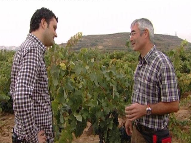 Comando Actualidad - Haro, La Rioja