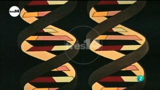 tres14 - Herencia genética