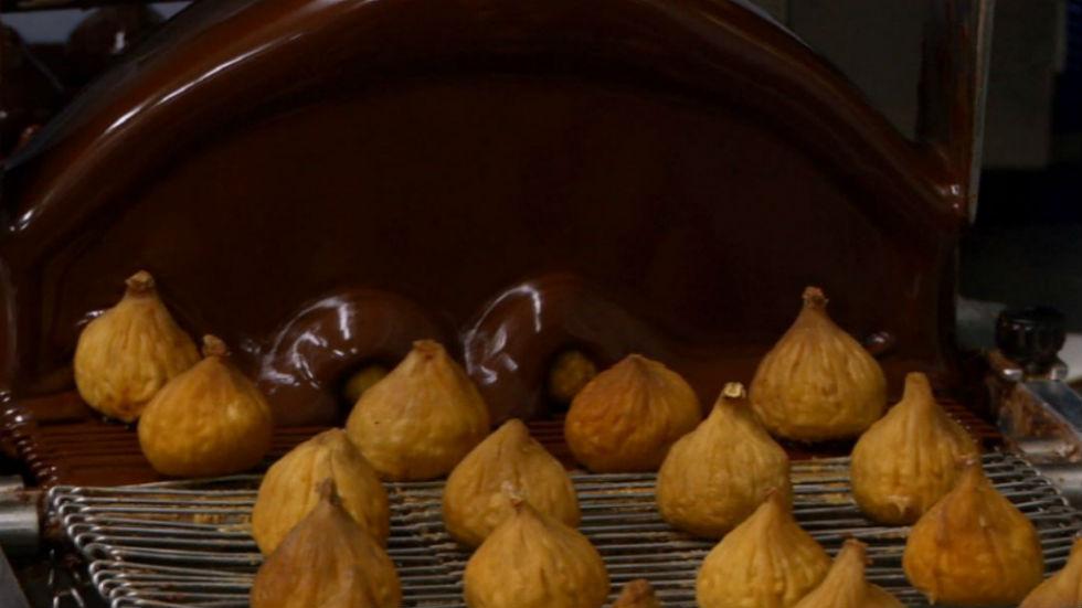 Aquí la tierra - Higo y chocolate, amigos para siempre