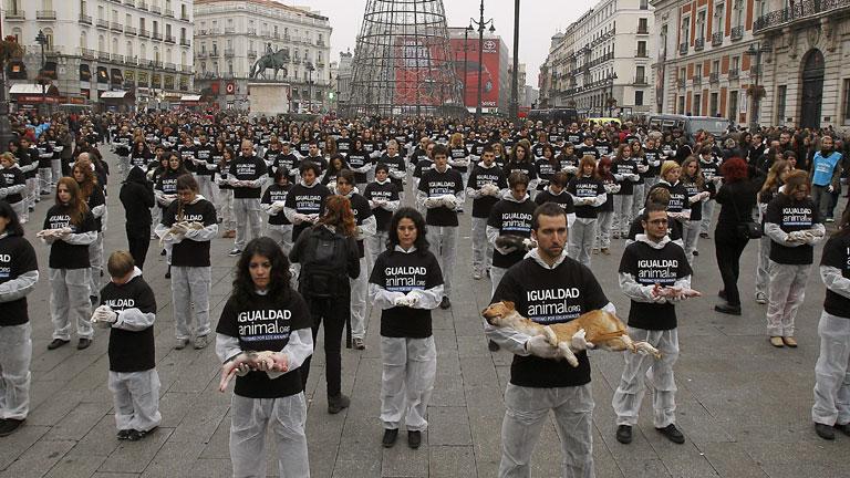 Hoy se celebra el d a mundial de los derechos de los for Puerta del sol en directo ahora
