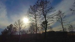 Crónicas - La huella del fuego