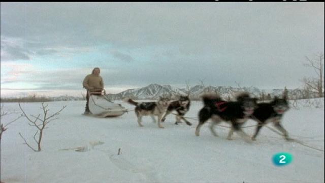 El hombre y la tierra - Iditarod, 1.000 millas sobre hielo