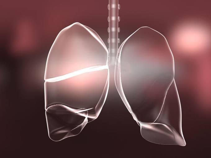 Ilustración de los pulmones.