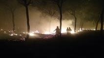 Desalojadas a 2.000 personas por un incendio en Moguer