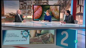 Para Todos La 2 - Debate: La industria del porcino