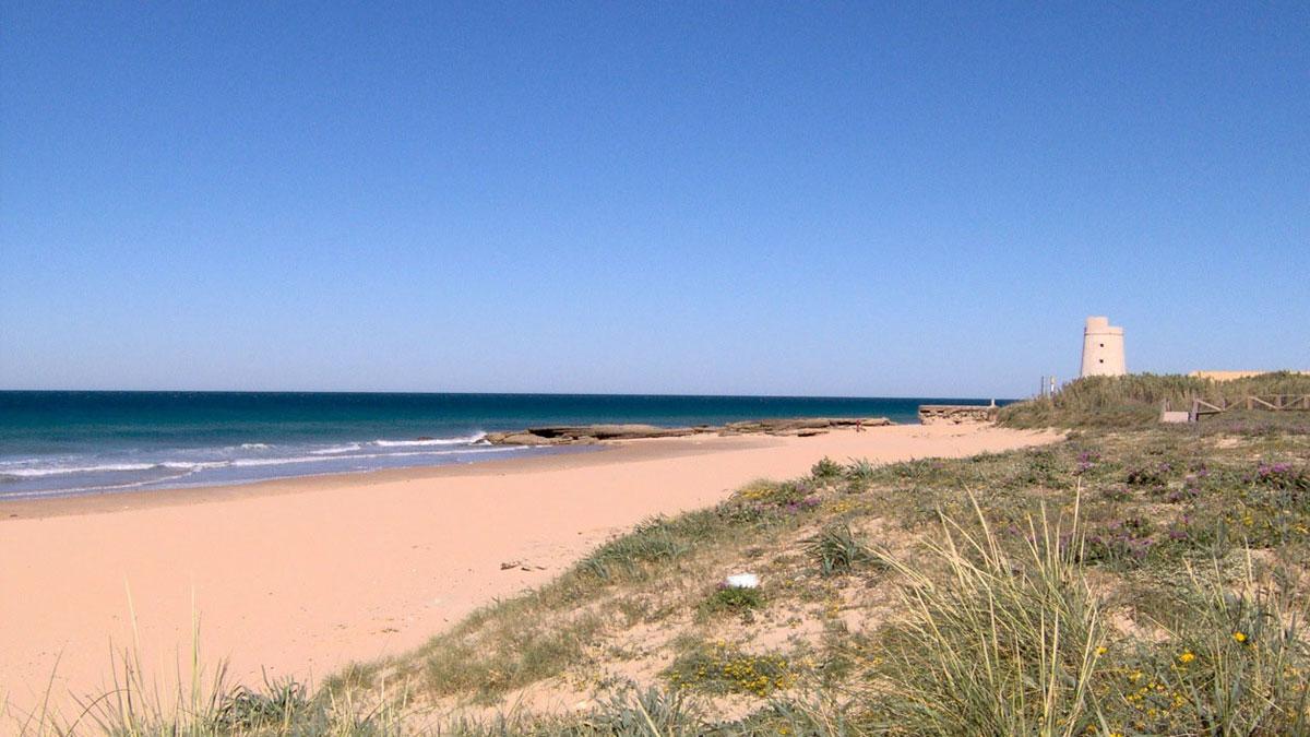 Ir al VideoUn inmigrante superviviente rescatado en la playa del Palmar y nueve fallecidos en una lancha neumatica en Cádiz