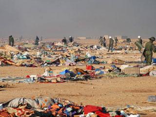 Informe Semanal - La intifada saharaui