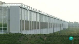 Agrosfera - Laboratorio de ideas - Invernaderos Holanda