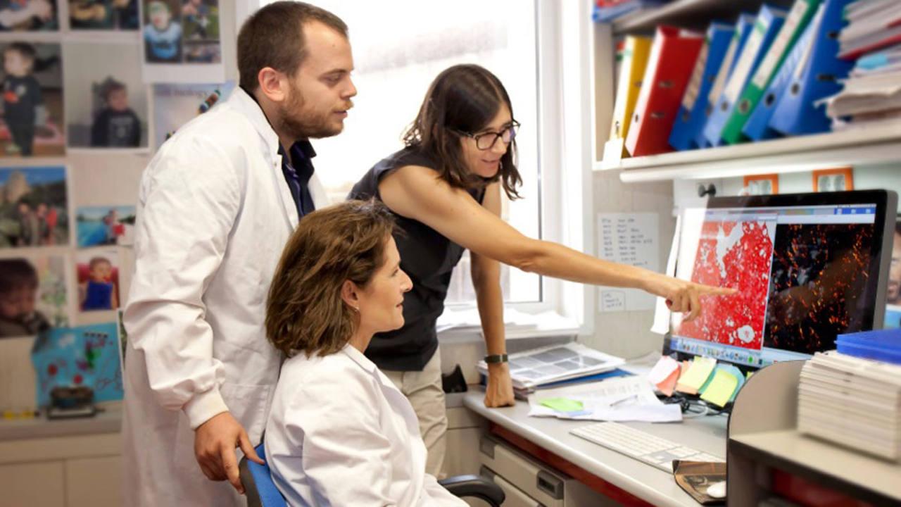 Los investigadores que han participado en el estudio, Juan M. Povedano, Paula Martínez y María Blasco.