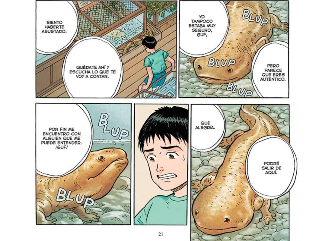 El kappa (en forma de salamandra) pidiendo ayuda al protagonista