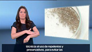 En lengua de signos - 04/06/16