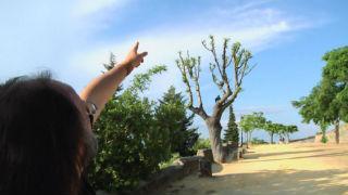 Aquí la tierra - Luismi y los huéspedes del aire