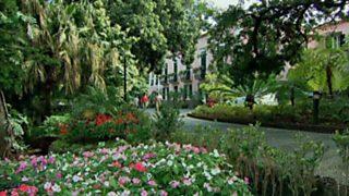 Paraísos cercanos - Madeira, la isla verde