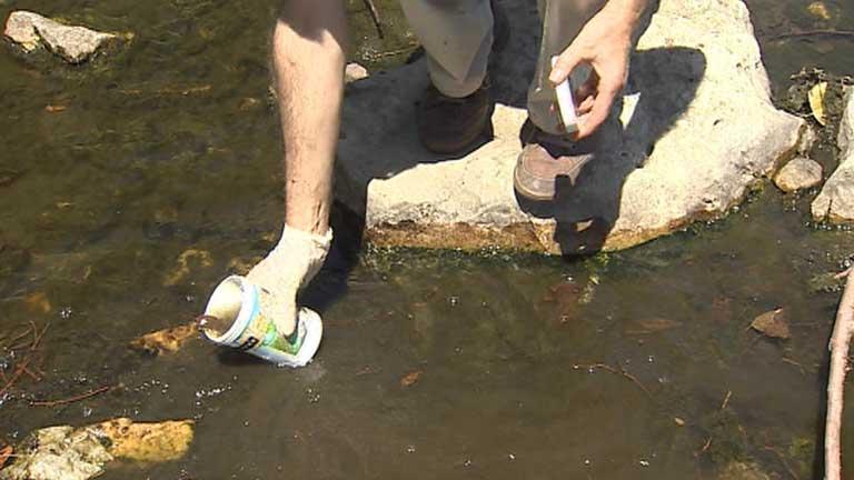 WWF denuncia el mal estado de los ríos