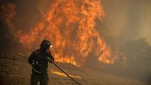 Ir al VideoMás de 50.000 hectáreas quemadas en lo que va de 2015, más que en 2013 y 2014 juntos