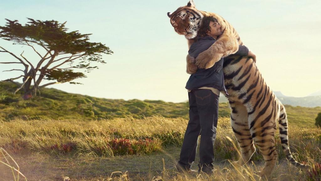Animales y personas c mo se comunican - Animales con personas apareandose ...