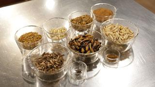 MasterChef 5 - Los insectos se apoderan de nuestras cocinas