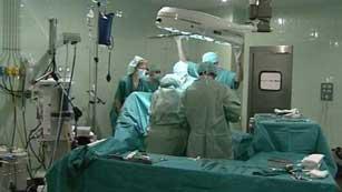 El Gobierno prepara la mejora de la seguridad jurídica del donante vivo