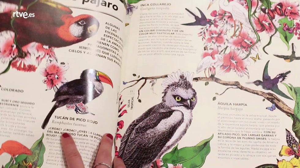 Recomendaciones de Literatura Infantil 3