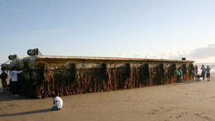 Un muelle arrasado por el tsunami recorre 8.000 kilómetros y aparece en las costas de Oregón