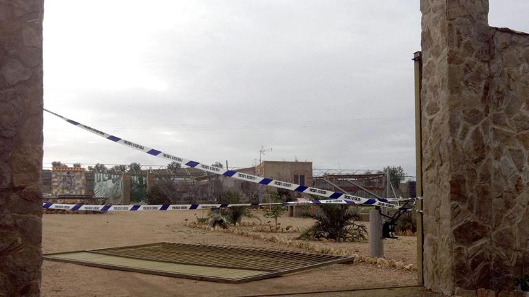Muere una mujer por el temporal de viento en Badajoz