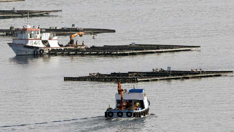 Fallece un pescador al naufragar su embarcación en Muros, Galicia