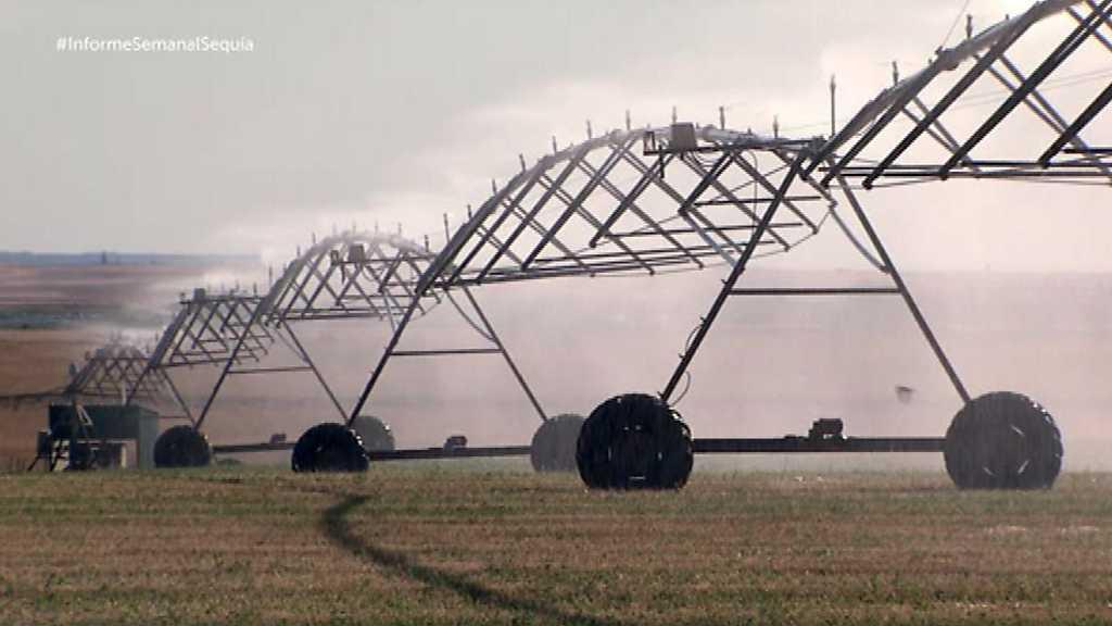 Informe semanal - El ojo de la sequía