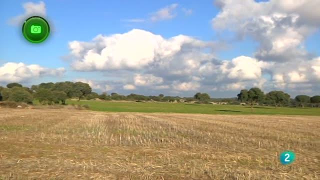 Agrosfera - En clave rural- Olmeda de las Fuenetes, Madrid