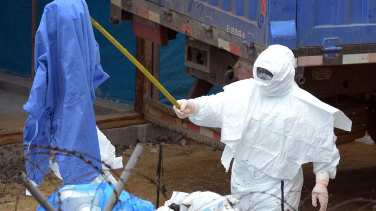 La OMS cree que para noviembre habrá una vacuna eficaz contra el virus del Ébola