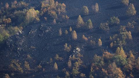 Ir al VideoLa oposición lamenta la falta de prevención y la política forestal de la Xunta y Medio Ambiente