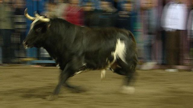 El toro 'Ratón' se cobra otra víctima