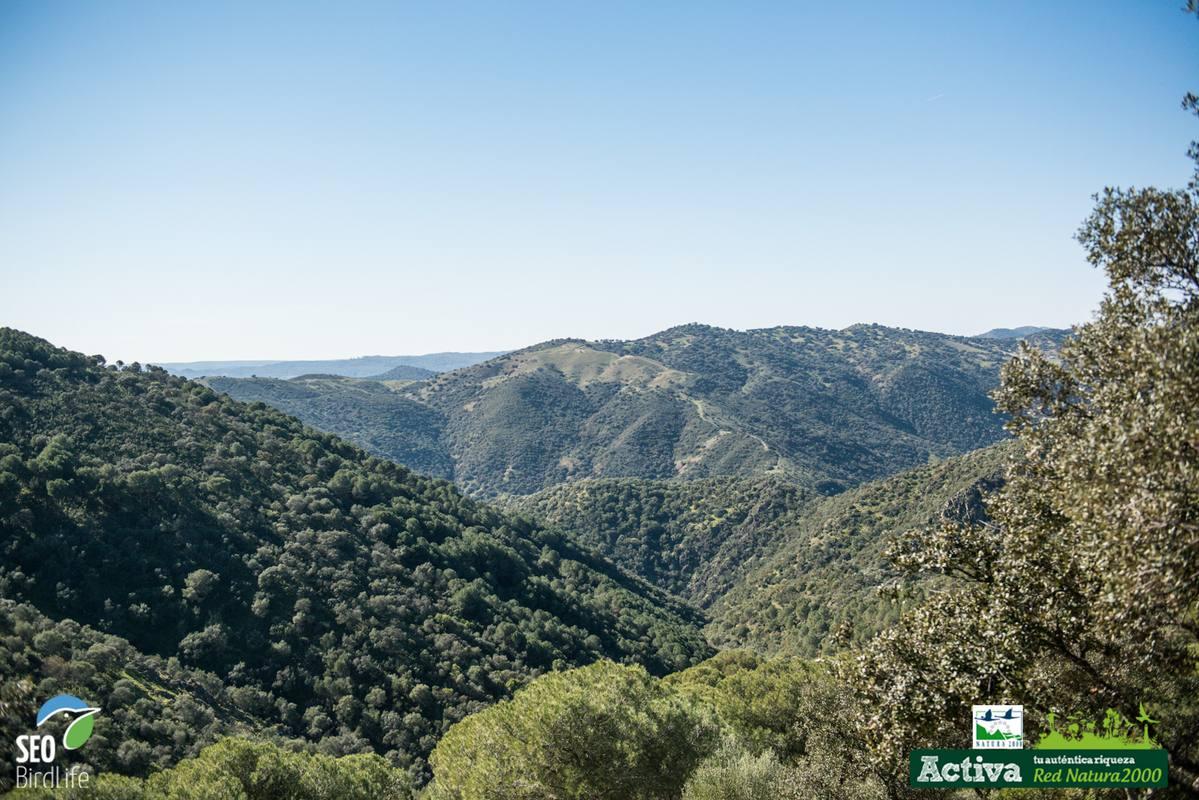 Paisaje de la sierra norte de Sevilla