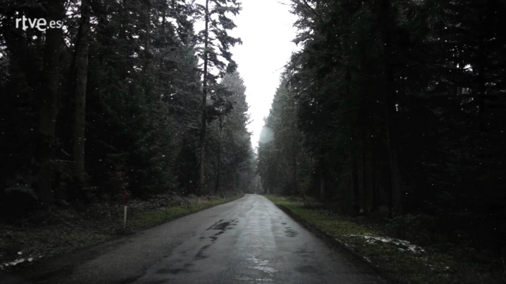 Palabra Voyeur - Un andar solitario. Wolfgang Borchert