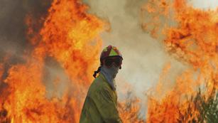 Los parados podrán ser requeridos para limpiar montes arrasados por el fuego