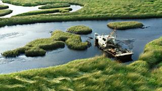 Grandes documentales - Parques nacionales norteamericanos: Los Everglades