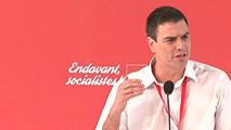 Ir al VideoPedro Sánchez pide reformar la Constitución para una España federal